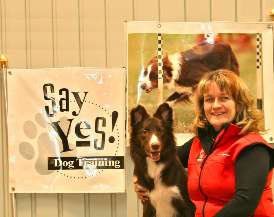 Susan Garrett of Say Yes! dog training